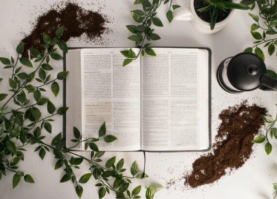 Image of Bible with flowers around